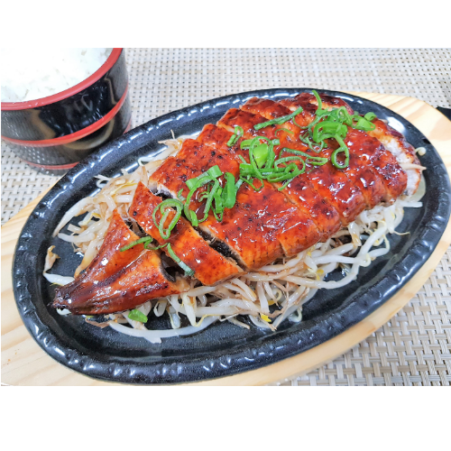 Eel Teriyaki with Rice