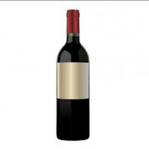 Aires Andinos Malbec (Bottle)